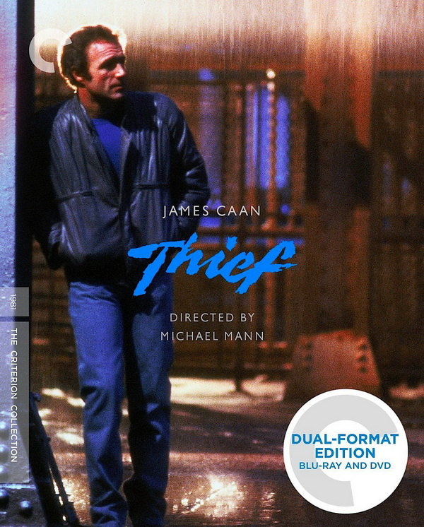 [小偷/神偷/大盗]Thief.1981.Criterion.Collection.720p.BluRay.x264-WiKi 11.5G[最新电影]